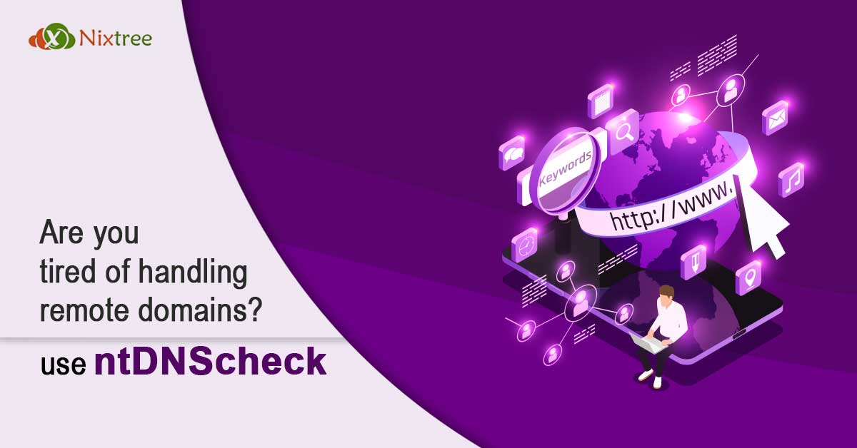 Are you tired of handling remote domains? Use ntDNScheck